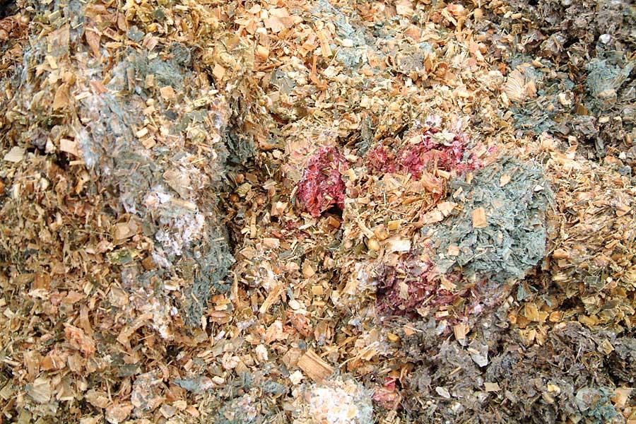 verschimmelt Maissilage, © ballensilage.com