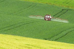 Pflanzenschutz im Getreide, © ballensilage.com