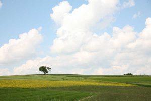 Agrarlandschaft, © ballensilage.com