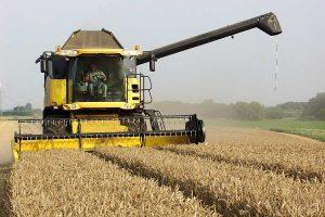 Getreideernte, © ballensilage.com