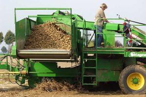 Kartoffelernte, © ballensilage.com