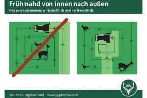 © Deutscher Jagdverband DJV