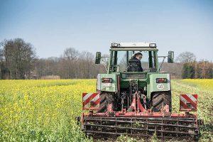 Im Agrarbereich, im Gartenbau und in der Hauswirtschaft werden Fachkräfte dringend gesucht, © Wolfgang Ehrecke / LWK Niedersachsen