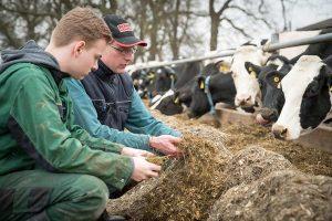 Grüne Berufe sind nach wie vor gefragt, © LWK Niedersachsen / Ehrecke