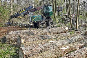 Forstarbeiten, © ballensilage.com
