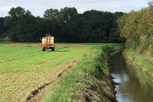 Planzenschutz in Gewässernähe, © getreidekonservieren.de