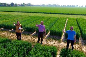 Die Pflanzenbauberater sind schon gespannt, wie der virtuelle Feldtag bei den Landwirten in der Praxis ankommt, © LWK NRW