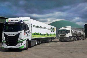An dem Standort in Lisburn, 10 Kilometer südlich von Belfast,werden dann stündlich 450 Normkubikmeter Biogas zu Biomethan aufbereitet. Mit dieser Menge kann das Logistikunternehmern zehn neue CNG-Trucks betreiben, die direkt an der neuen, betriebseigenen Biomethan Zapfstelle betankt werden, © WELTEC BIOPOWER