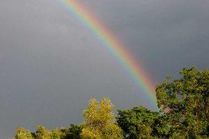 Regenbogen, © ballensilage.com
